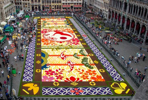 Flower-Carpet-2016_6