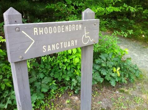 Nehantic Trail - Rhododentron Sanctuary Trail entrance sign.