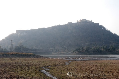 Kankawari Fort as seen from the lakeside