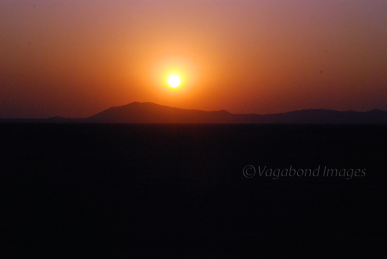 Pink Sunset17