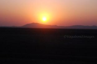 Pink Sunset23