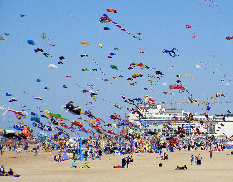 Картинки по запросу kite festival india