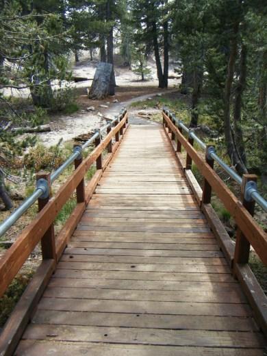 Taking a stroll through the Tahoe Meadows.