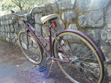 Pretty Plum Bike