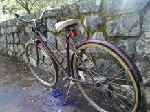 Pretty Plum Bike