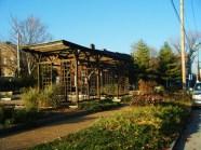 Soulard Community Garden, St. Louis