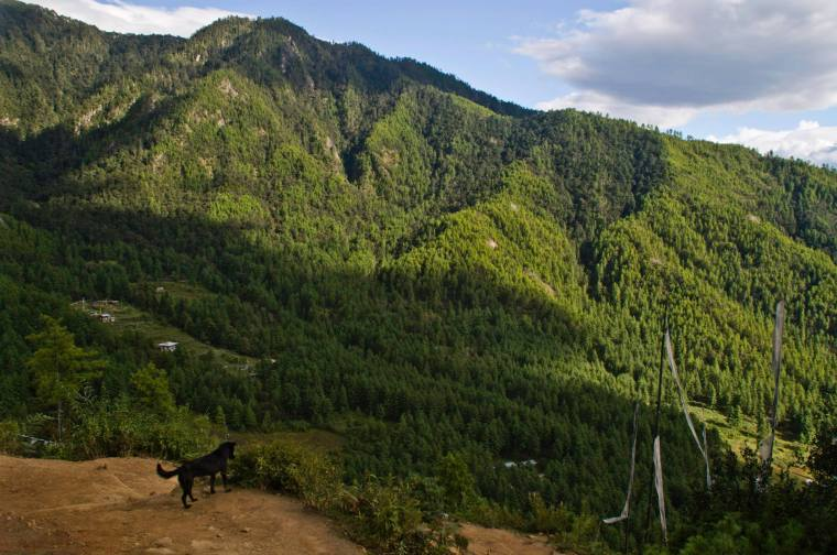 Paisaje montañoso habitual en Bután