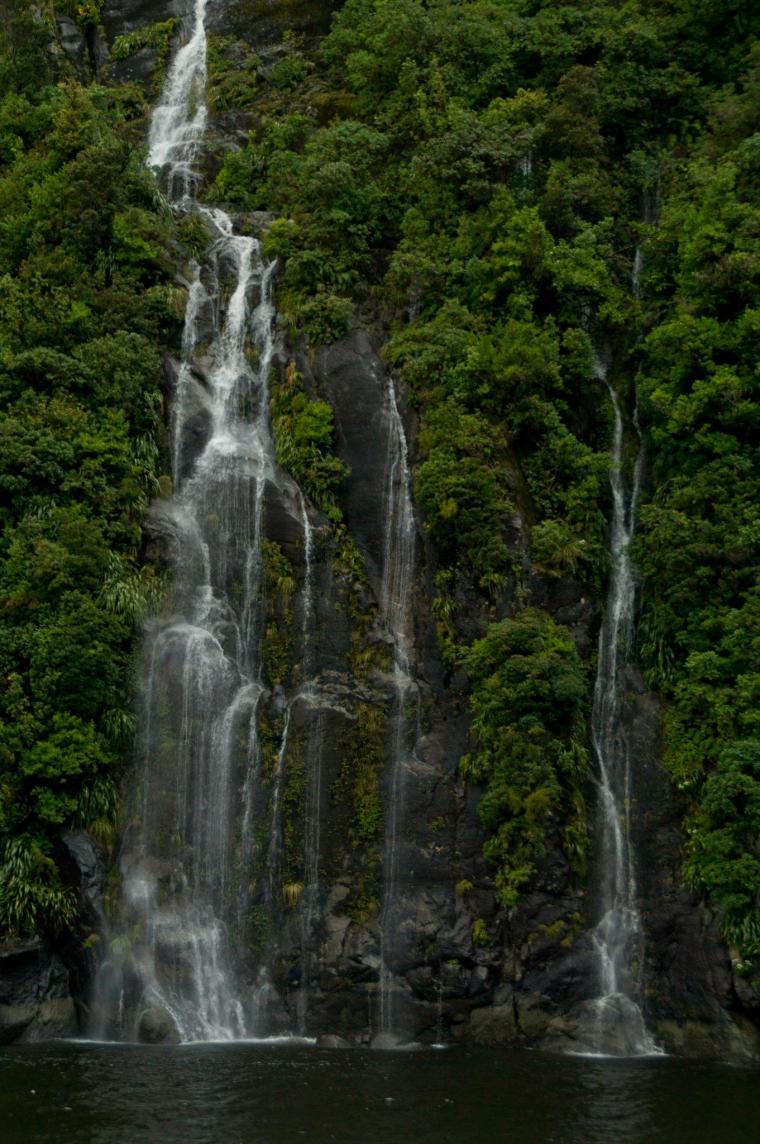 Cientos de cascadas se forman en Milford Sound, el punto más húmedo de Nueva Zelanda