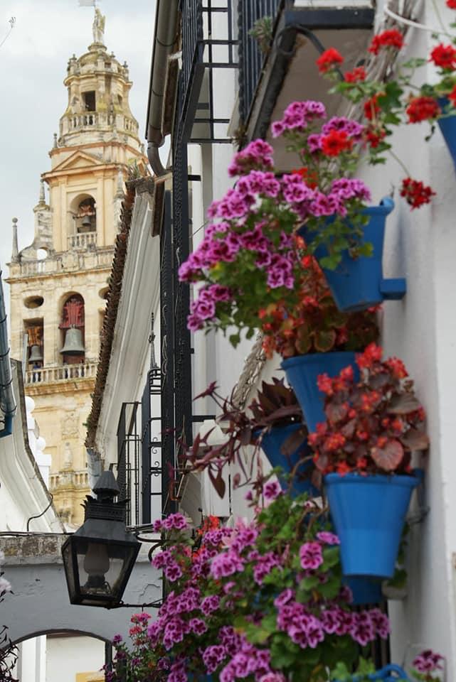 La torre de la Mezquita, vista entre flores y macetas desde la Calleja de las Flores, Córdoba