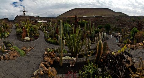 Jardín de cactus de César Manrique