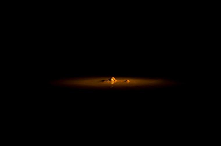 El esquivo caimán blanco, que pudimos ver en un paseo nocturno por el río Madre de Dios
