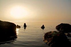 Patos descansando en las aguas del lago de Garda al atardecer