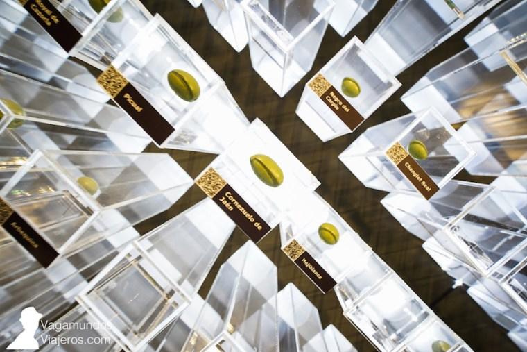 Las variedades de aceituna que han ido recopilando en Terra Oleum también están en su museo