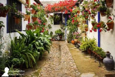 Marroquíes 6, el patio ganador en la modalidad tradicional en el concurso de patios de Córdoba 2018