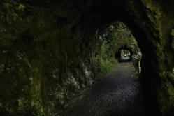 Estos túneles existían cuando la Senda del Oso era en realidad una vía de ferrocarrill minera