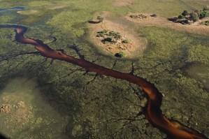Vuelo sobre el delta del Okavango, Botswana