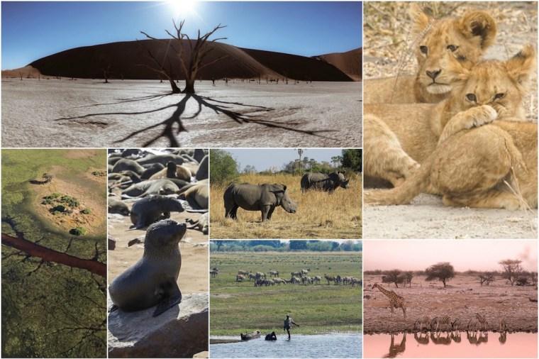 Fotos de mejores momentos del viaje por Namibia y Botswana