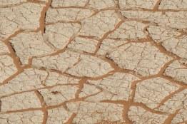 El suelo seco de Deadvlei en el desierto de Namibia
