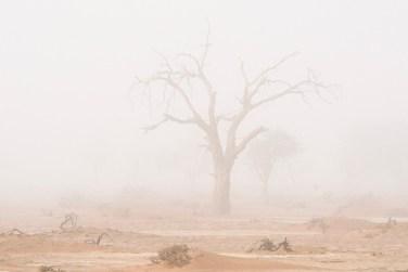 La niebla cubriendo las dunas de Sossusvlei en el desierto de Namibia
