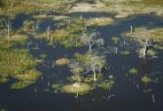 Pequeñas islas en el delta del Okavango, Botswana, vistas desde el sobrevuelo en avioneta