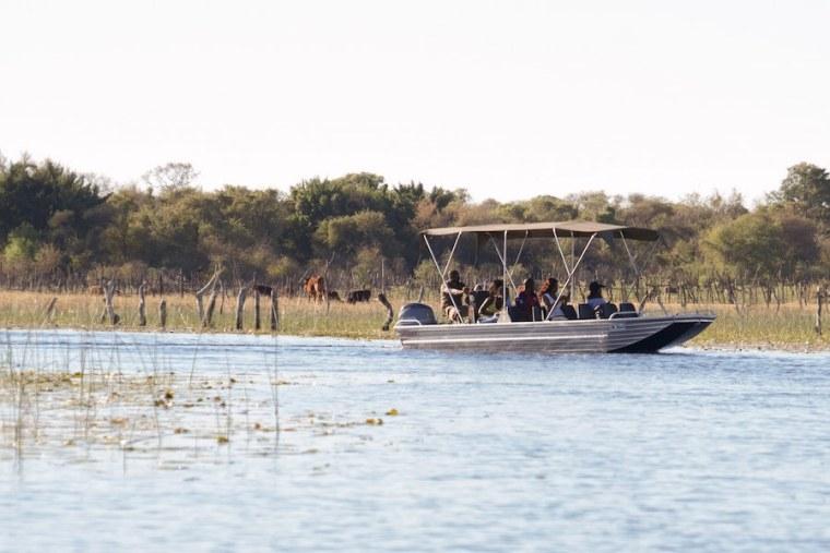 Un barco recorriendo los canales del delta del Okavango, en Botswana