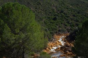 Vista del río Tinto desde el ferrocarril del Parque Minero, Huelva