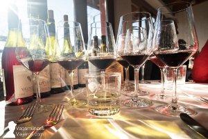 Cata de vinos Valpolicella en Cotte San Mattia, en Verona