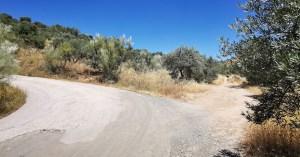 Desvío hacia el sendero que lleva a las cárcavas de Patones