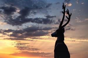 Estatua del vedado surfista en Nazaré al atardecer