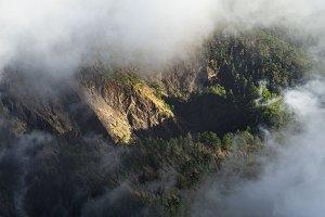 Pinos cubriendo las paredes de la Caldera de Taburiente, vistos desde Roque de los Muchachos