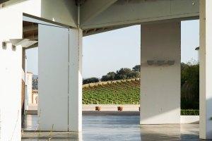 Nueva construcción de Bodegas Real, con los viñedos de fondo