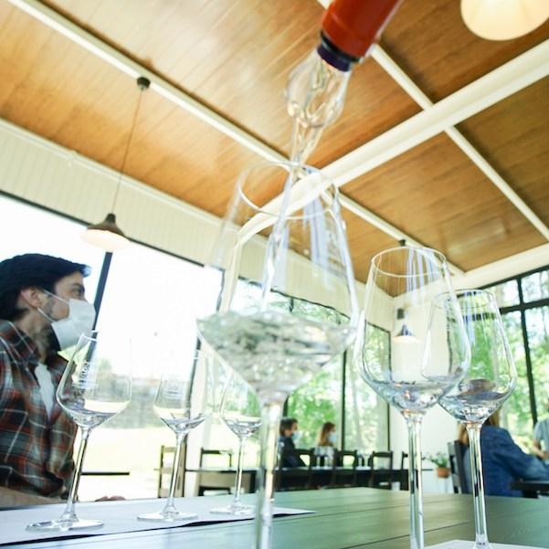 Cata de vinos en Bodega Algueira, Lugo, Ribeira Sacra