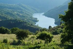Cañón del Sil visto desde Cristosende en la Ribeira Sacra, Galicia