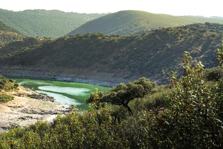 Vistas del río Tiétar en el Parque Nacional de Monfragüe, Extremadura
