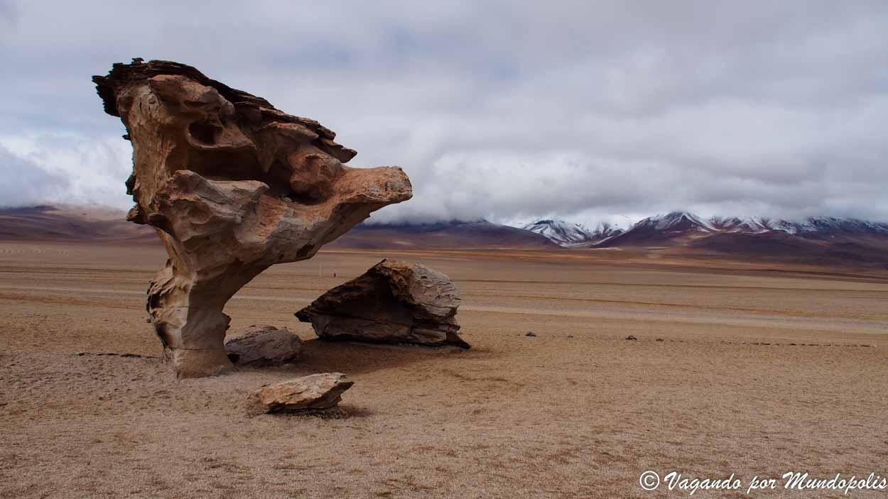 arbol-de-piedra-desierto-de-siloli