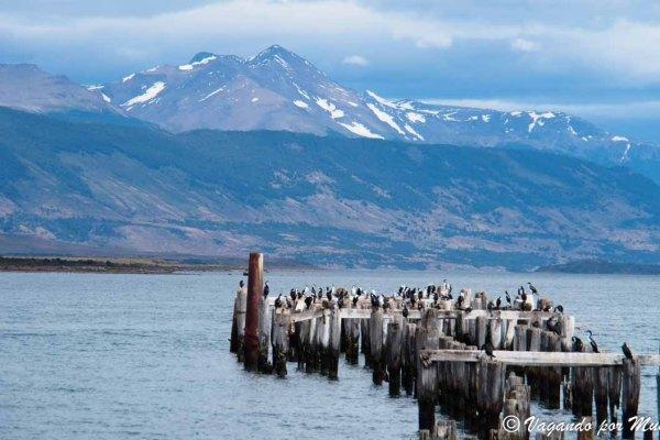 Que ver en Puerto Natales: La Capital de Ultima Esperanza