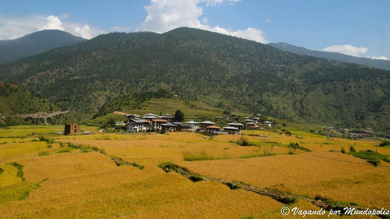 Lobeysa-Bhutan