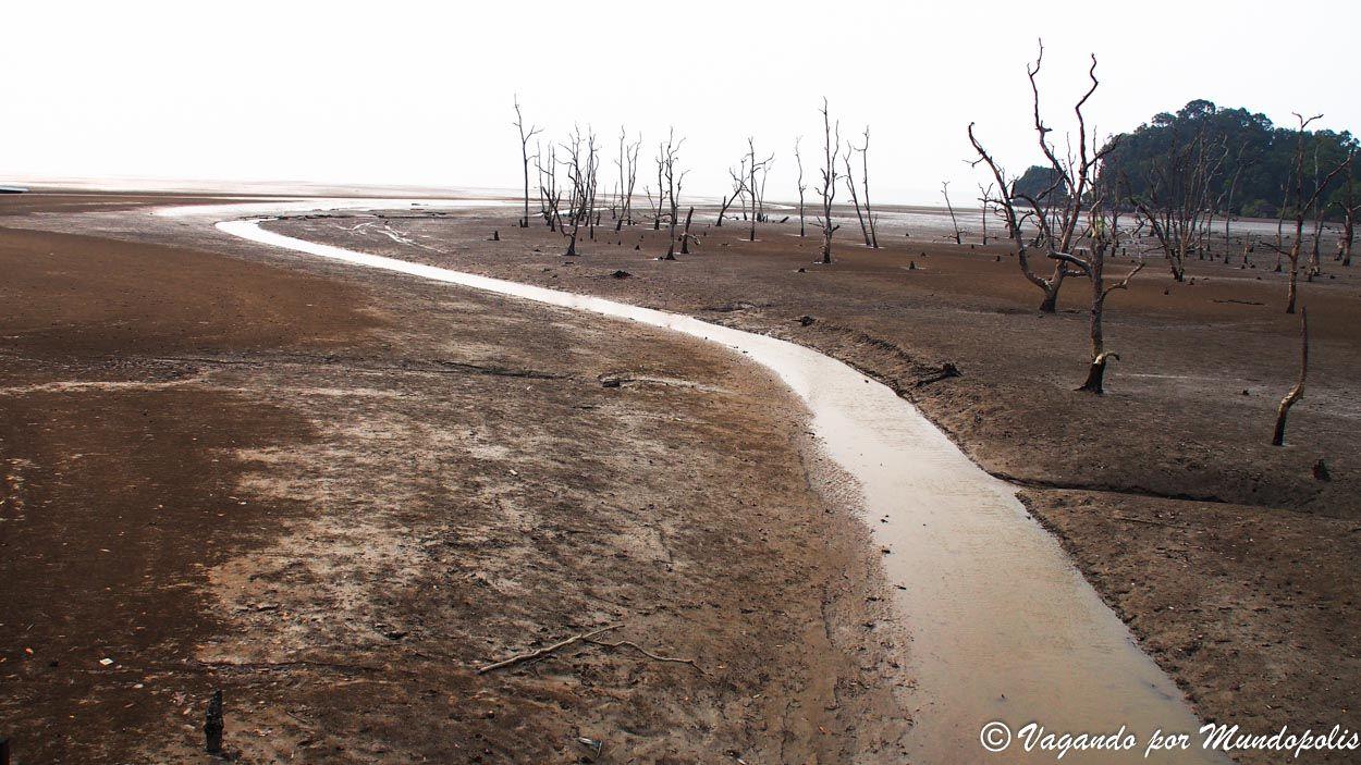 senderos-parque-nacional-de-bako