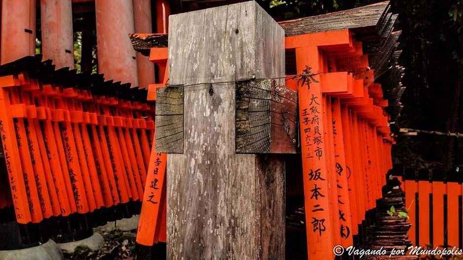 torii-fushimi-inari