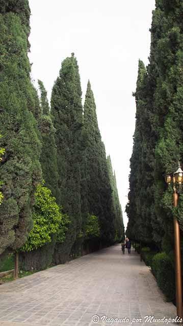 jardin-eram-shiraz