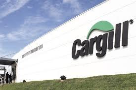 Estágio Cargill 2016