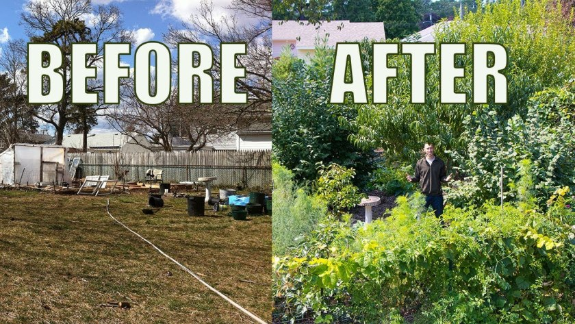 before-after-permaculture