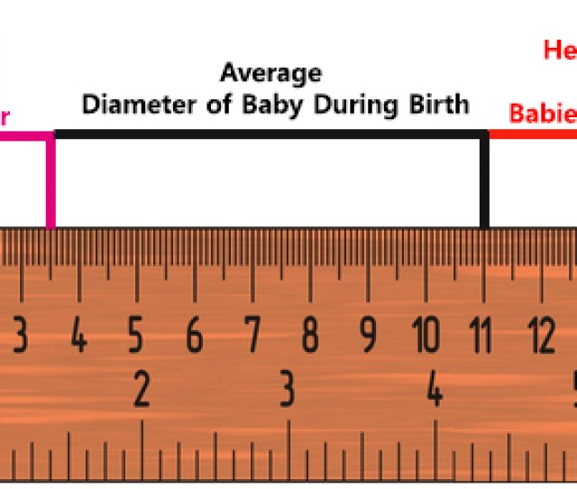 To Give You More Idea As To How Much Stretching It Will Do The Normal Vaginal Diameter Is Just  5 Cm And The Average Diameter Of Babys Head Is