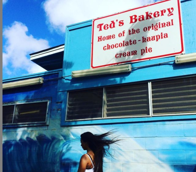 Chocolate Haupia Pie Ted's Bakery