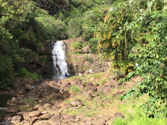 Waimea Valley Waterfall Hike Oahu North Shore