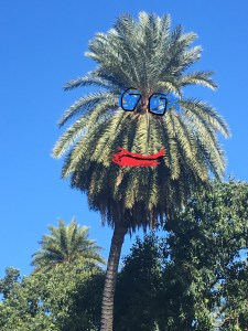 Happy Hawaii Palm Tree