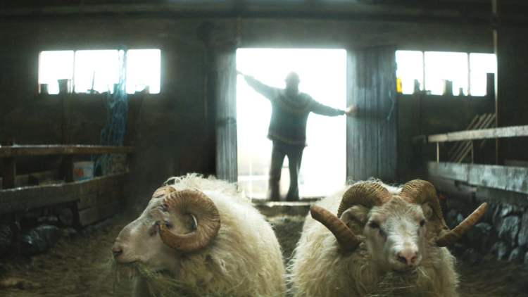 rams-movie-two