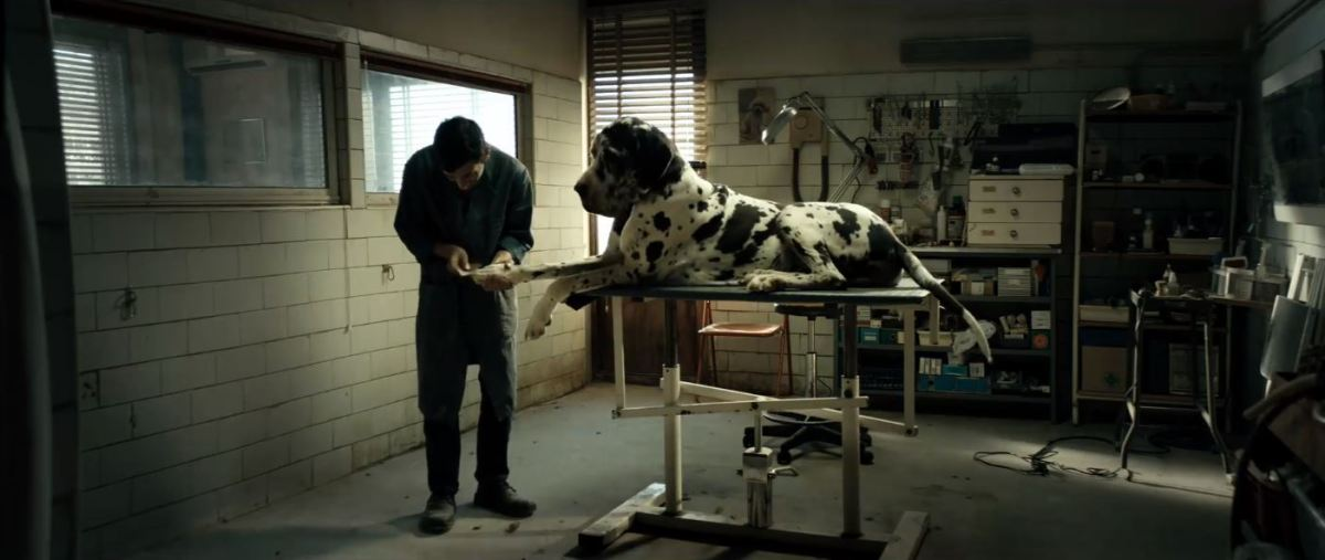 Cannes Film Festival Review: Matteo Garrone's 'Dogman'