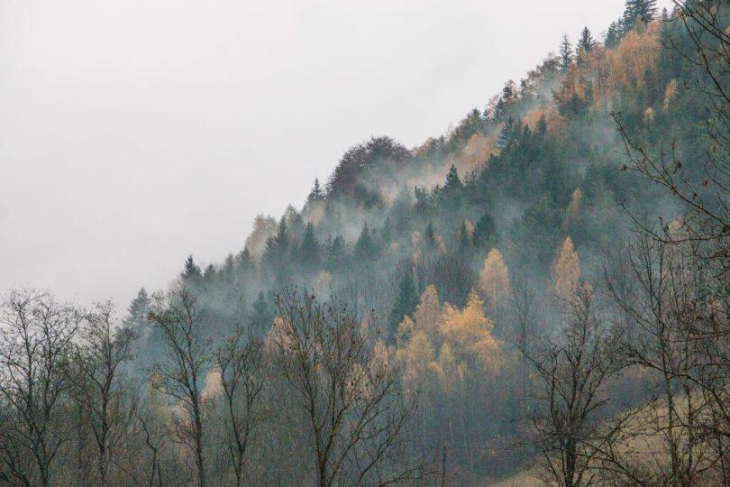 img_9162-automne-valbonnais