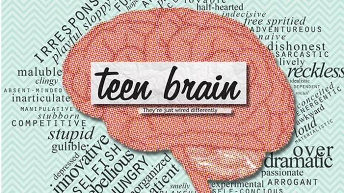 immature teen brain